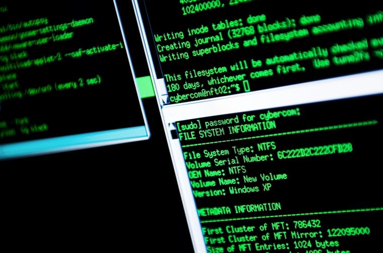 Tufft för staten att tävla om IT-specialisterna