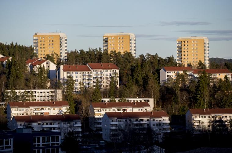 Svensk segregation följer internationellt mönster