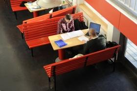 Unga tjänstemän tror på flera karriärbyten
