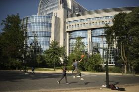 Här är partiernas favoritutskott i EU-parlamentet