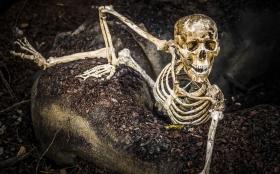 Föräldrar rasar mot grannens sjuka Halloweenspex